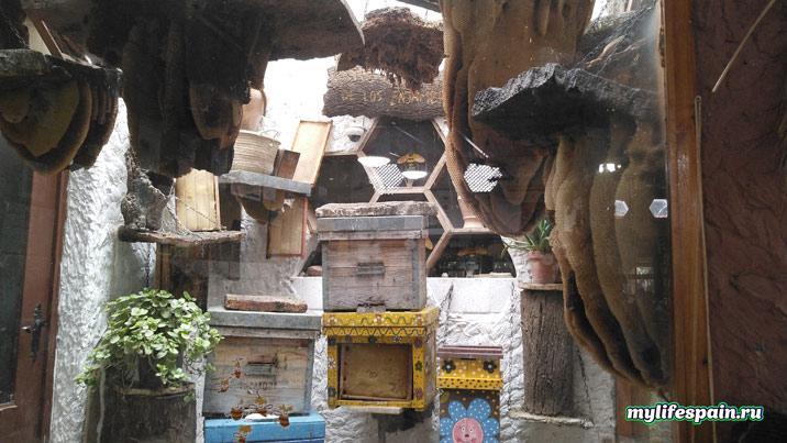Экскурсия на фабрику по производству мёда в Испании