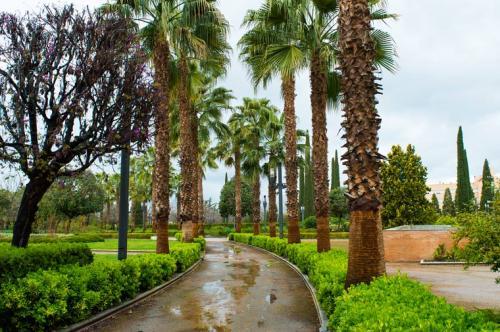 Park Federico García Lorca - Granada