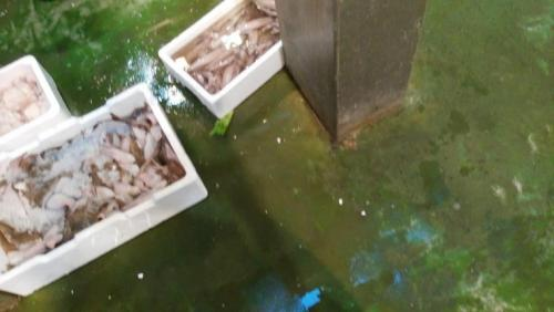 Рыбный рынок  в городе Херес де ла Фронтера - тухлая рыба